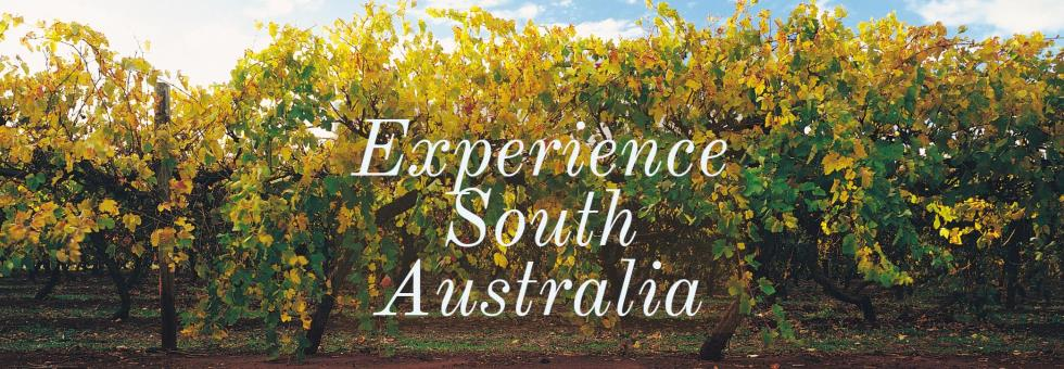 Wine, food and wildlife - Experience South Australia