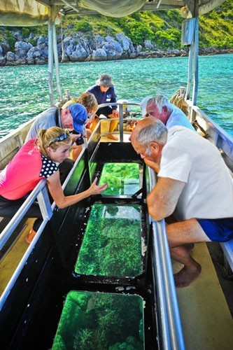 Coral Expeditions Cruises 4 Night Northern Reef Dua Travel