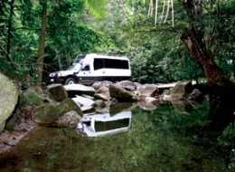Daintree Wanderer 4WD Small Group Eco Tour