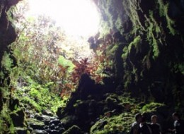 Hiking in the Lava Tubes Full Day